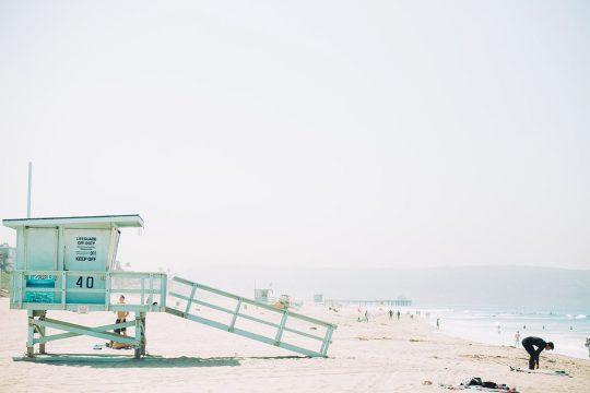 Summer Diaries