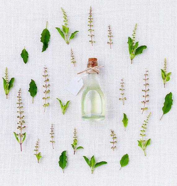 aroma-veggies